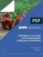 [EAD01_20] U1T2 - História e Cultura Afro-brasileira, Africana e Indígena