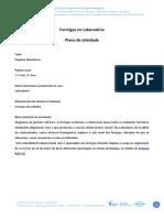 Formigas_laboratório3Ano