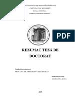 REZUMATUL-TEZEI