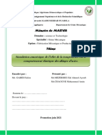 Mémoire Final (1)