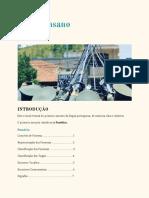 eBook de Português MilicoInsano