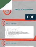 SEG4219 - SAFT_taxonomias (2)