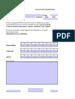 Autoevaluación_Co (1)