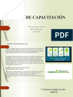 Temas de Capacitación- Grupo