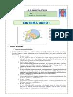 3° ANATOMIA SISTEMA OSEO I