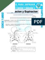 428115061 8 Ficha Inspiracion y Espiracion Para Cuarto de Primaria