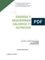 ENERGIA Y REQUERIMIENTO CALORICO Y DE NUTRICION