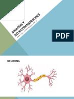 Sinpasis y Neurotransmisores