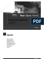 BIWA2008-presentation7