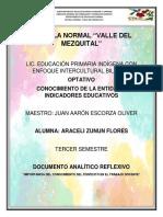 Documento analítico reflexivo  ARACELI ZUNUN FLORES