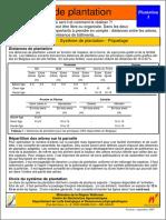 3Plantation-plandeplantationpdf