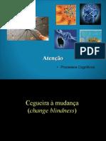 Sistemas_Cognitivos_atencao