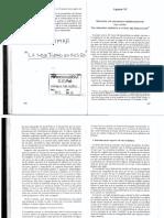 BLEICHMAR. La subjetividad en riesgo. cap. XV Sostener los paradigmas desprendiéndose del lastre
