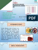 Beta Oxidaciòn de Àcidos Grasos Insaturados y Saturados de Cadena Par (Bioquimica )Grupo 2
