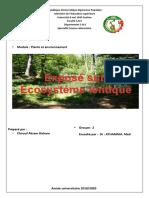écosysteme lentique chirouf