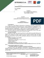 Raport Audit Int.2015
