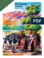 Manual de Bienestar Animal Rodeo 2021 Final