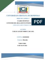 Cuadro Sinoptico_ Carlos Torres (1)