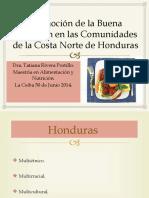 presentacic3b3n-de-comunidades-de-la-costa-norte (1)