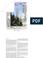 forestal_profortara