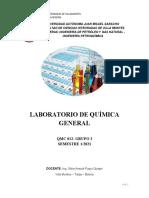 Guia qmc pandemia (1)