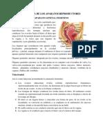 ANATOMIA DE LOS APARATOS REPRODUCTORES MASIEL 2-17-5516