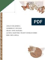 ENSAYO DE QUIMICA