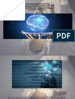 Ramas de la psicología