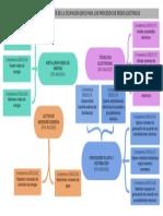 Estructura Funcional Ocupacional