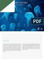 l'océan et la menace plastique