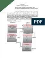 docdownloader.com-pdf-actividad-1-uso-del-excel-y-acces-sena-dd_077b828e22dc6f8afbc5595f243ad577-convertido