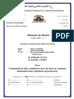 MEMOIRE-2021_VPROF