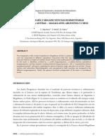 Estratigrafia y Megasecuencias Sedimentarias en La Cuenca Austral-Magallanes, Argentina y Chile