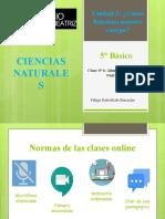 Clase 6 Alimentos y Nutrientes (5° Básico)