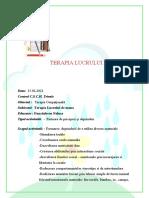 Proiect Terapie Ocupationala - Terapia Lucrului de Mana Danciulescu Nelusa