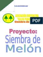 Proyecto Melon Listo de Rellenar