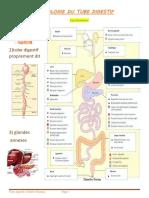Digestif-1 (Mrabet Khadija)