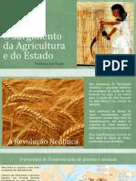 O surgimento da Agricultura e do Estado