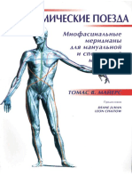 Mayers Anatomicheskie Poezda.296952