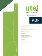 ACTIVIDAD 4 Organización y Estructuras Organizacionales