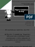 Avaliação com a Figura-Complexa-de-Rey