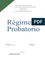 Regimen Probatorio