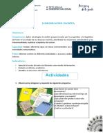 2°B.T.C.- El Informe (1)