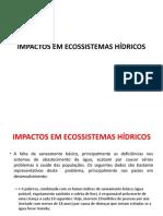 IMPACTOS EM ECOSSISTEMAS HÍDRICOS