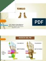 TOBILLO- Anatomia y movimientos