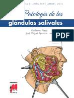 ponencia_patologia_glandulas_salivales