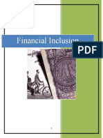 Financial Inclusion(2)