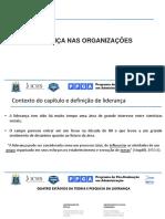 Apresentação do artigo Liderança nas organizações