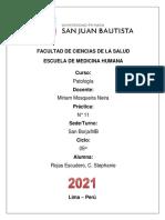 ROJAS ESCUDERO, C. STEPHANIE - DRA. MOSQUEIRA - PRÁCTICA N° 11