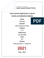 ROJAS ESCUDERO, C. STEPHANIE- DRA. MOSQUEIRA - PRACTICA N° 5